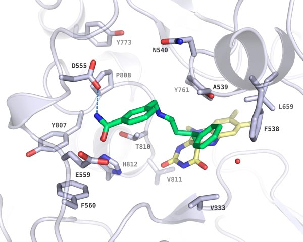 Structure-activity studies on N-Substituted tranylcypromine